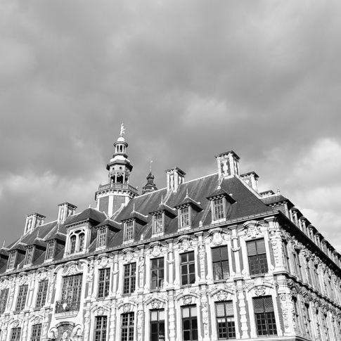 The Old Stock Exchange (Vieille Bourse) - Lille France